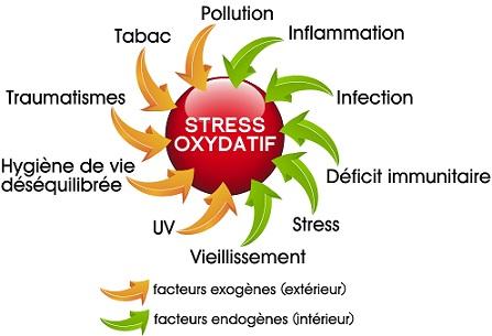 stress-oxydatif