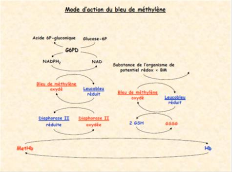 Bleu de méthylène (BM) mode d'action