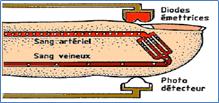 Principe de L'absorption de la lumière rouge et infrarouge par la MethHb
