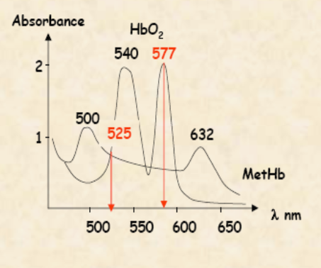 Absorbance de l'oxyhémoglobine et de la méthémoglobine