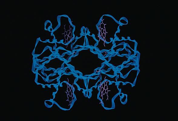 méthémoglobine
