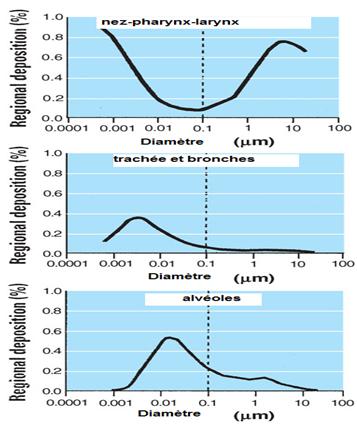 Prédiction de la déposition des particules selon leur diamètre