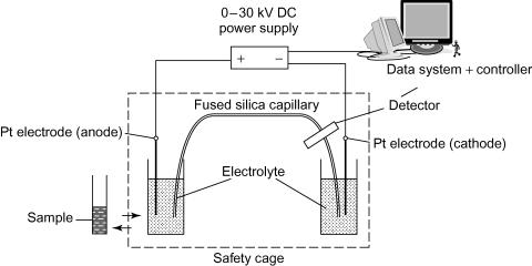 Capillary Electrophoresis for Drug Analysis » Analytical