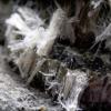 Amiante fibres