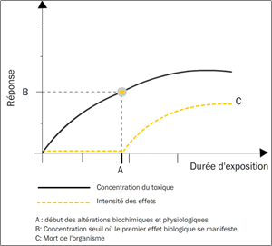 Figure 3.4. Toxicité chronique due à une accumulation de doses