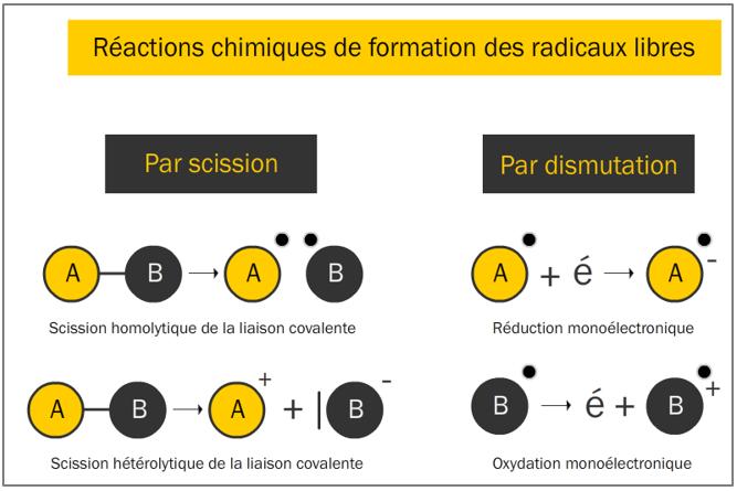 Figure 9.10. Réactions de formation de radicaux libres