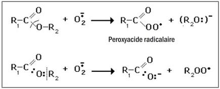Figure 9.12. Réactivité de l'anion superoxyde